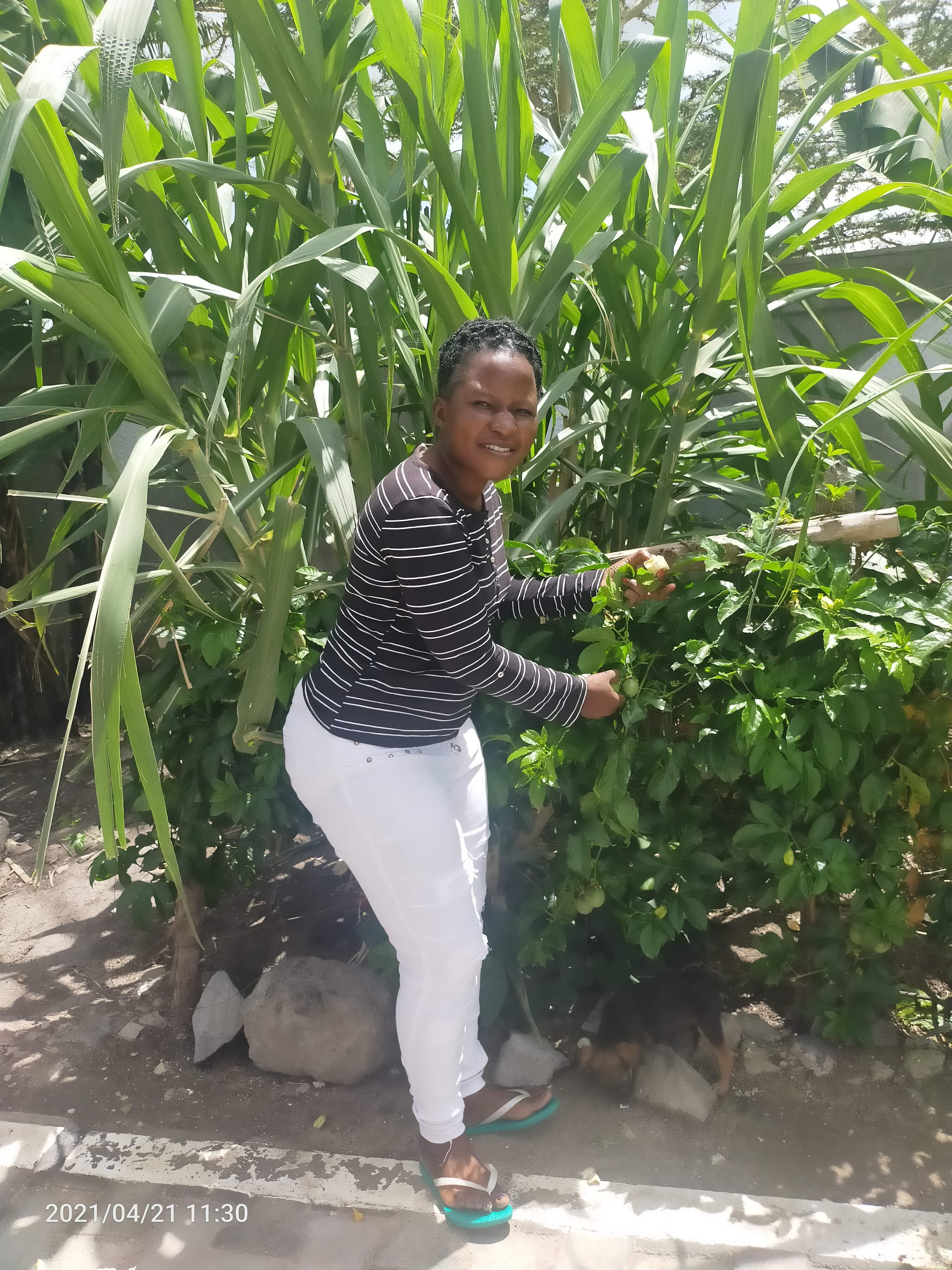 Cynthia Wasafi Wechabe